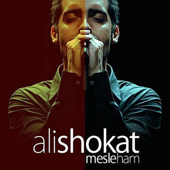 دانلود آهنگ جدید علی شوکت به نام مثل هم